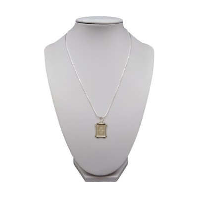 Silver pendant zodiac sign Pisces SSZD1512