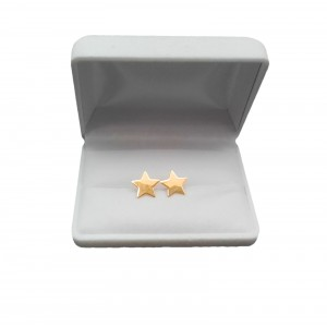 Silver earrings with gold-plated stars SK15M